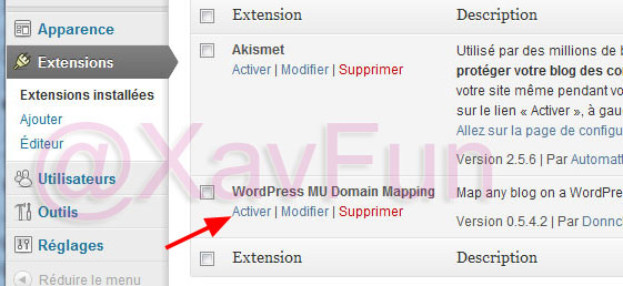 activer WordPress MU Domain Mapping