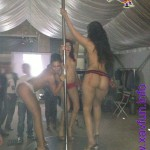 pole dance webxday