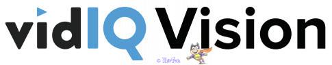 vidiQ Vision