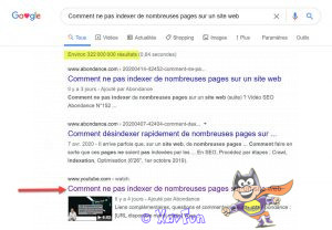 ne pas indexer ses pages